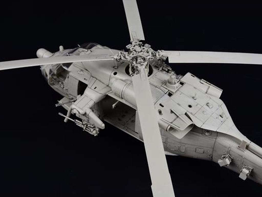 MH-60L Black Hawk  (Vista 4)