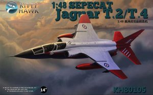 Sepecat  Jaguar T.2 / T.4 - 1997  (Vista 1)