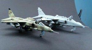 Jaguar GR.1/GR.3  (Vista 2)