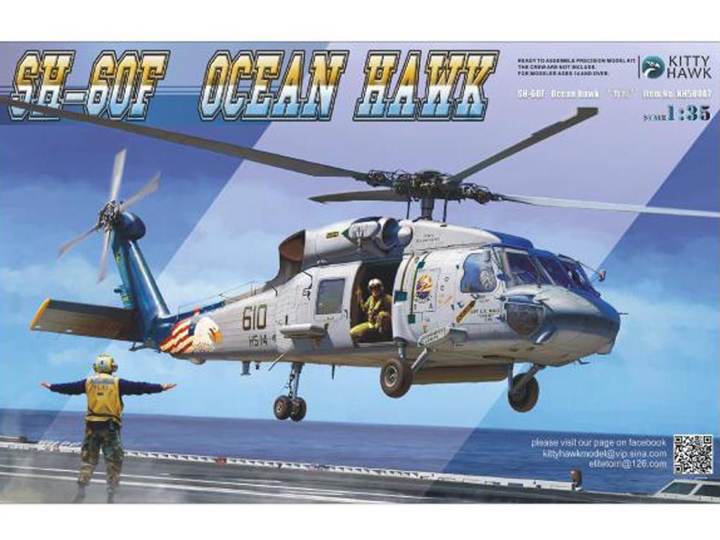 SH-60 F Ocean Hawk (Vista 1)