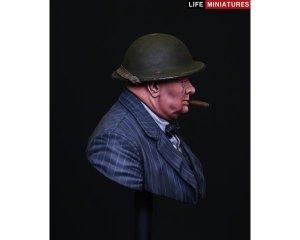 British Prime Minister Winston Churchill  (Vista 5)