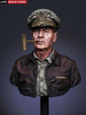 General Douglas MacArthur   (Vista 1)