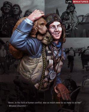 The Few' RAF Figheter Pilot 1940 Battle   (Vista 1)