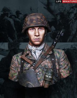 Panzergrenadier, 12th SS Panzer Division  (Vista 1)