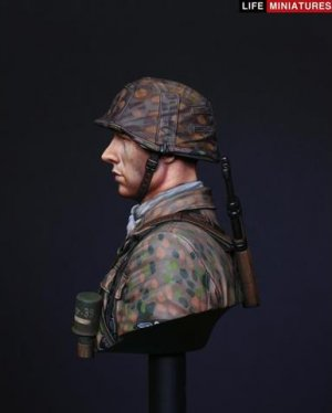 Panzergrenadier, 12th SS Panzer Division  (Vista 2)