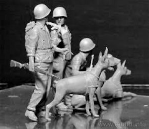 Dogs in the service in Marine Corps, WW   (Vista 5)