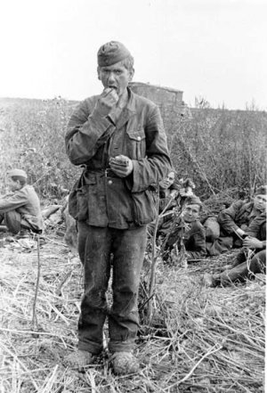 Aleman Capturado WWII  (Vista 4)