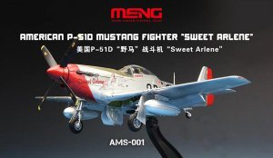 American P-51D Mustang Fighter  (Vista 1)