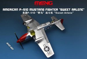 American P-51D Mustang Fighter  (Vista 4)