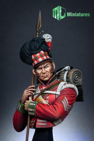 79th Cameron Highlander,Waterloo  (Vista 2)