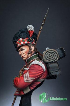 79th Cameron Highlander,Waterloo  (Vista 3)