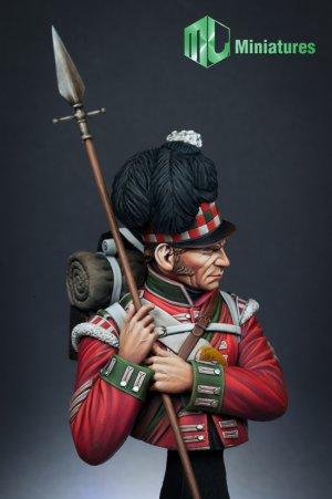 79th Cameron Highlander,Waterloo  (Vista 6)