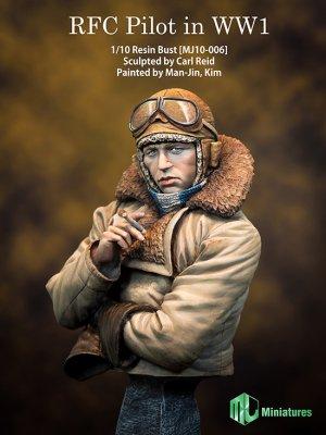 RFC Pilot in WW1   (Vista 1)