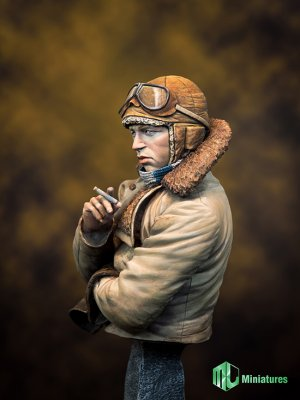 RFC Pilot in WW1   (Vista 2)