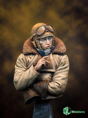 RFC Pilot in WW1   (Vista 5)