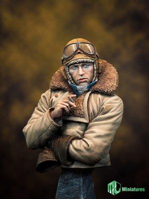 RFC Pilot in WW1   (Vista 6)