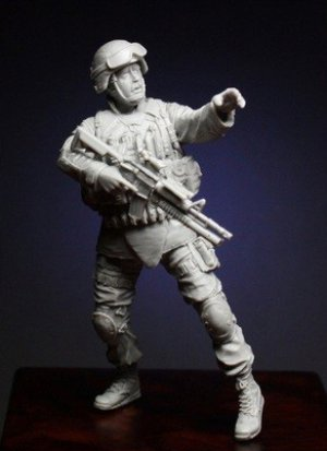 Soldier of 10th Mountain Division  (Vista 2)
