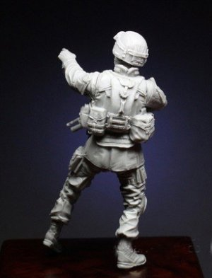 Soldier of 10th Mountain Division  (Vista 3)