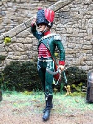 French Officer of the 12e Regiment   (Vista 1)