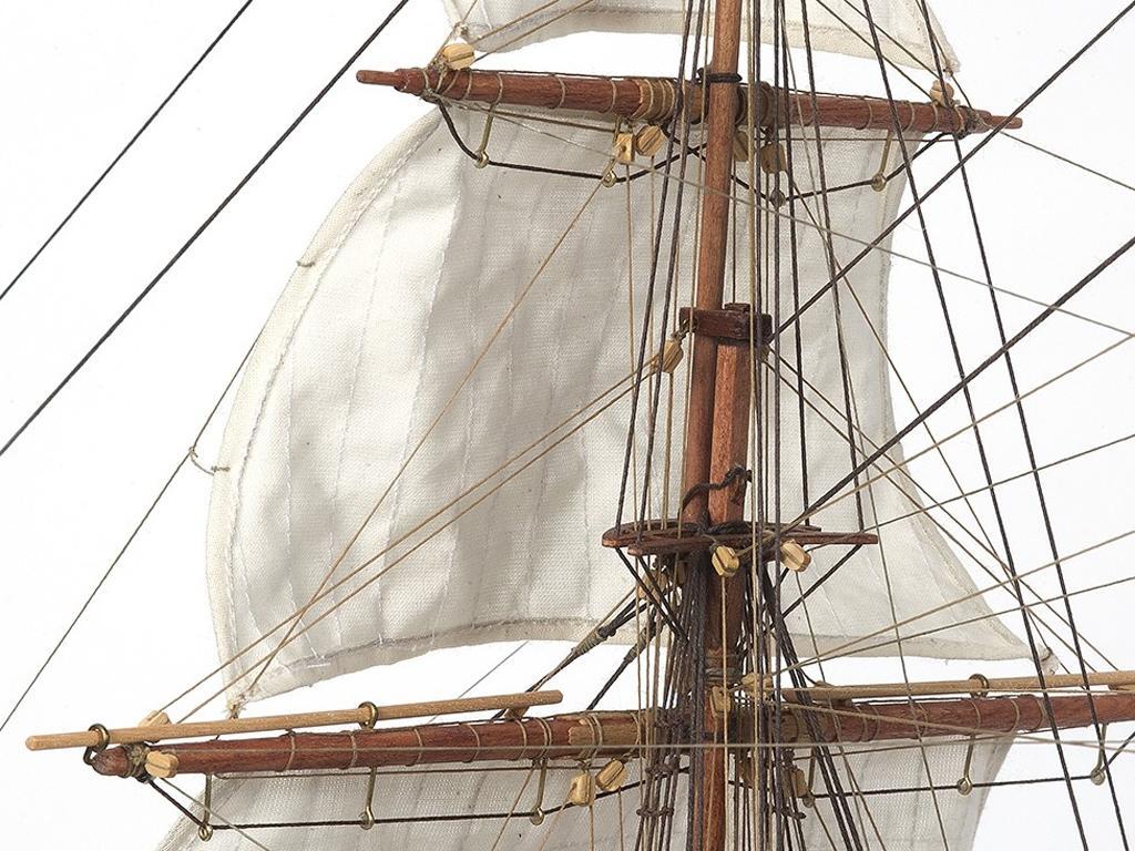 HMS Beagle (Vista 14)