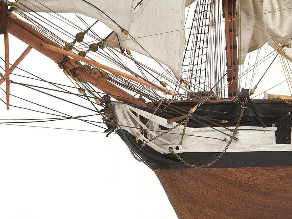 HMS Beagle (Vista 5)