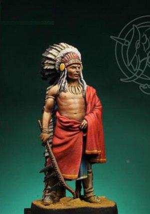 Indian Chief 19th century  (Vista 1)