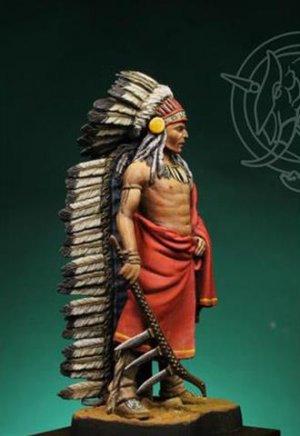 Indian Chief 19th century  (Vista 2)