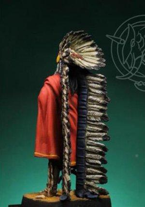 Indian Chief 19th century  (Vista 3)