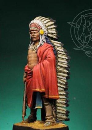 Indian Chief 19th century  (Vista 4)