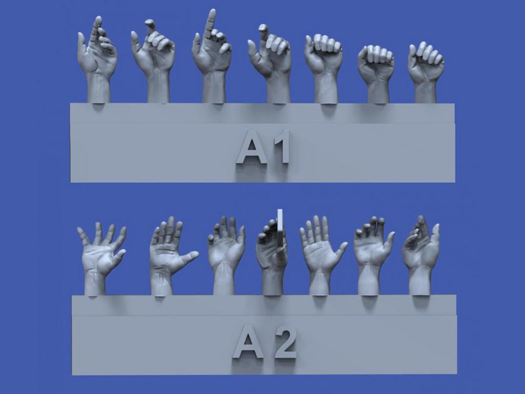 Surtido de manos No.1 (Vista 1)