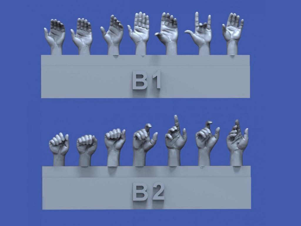 Surtido de manos No.2 (Vista 1)