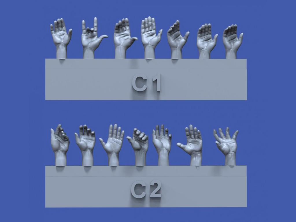 Surtido de manos No.3 (Vista 1)