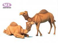 Camellos (Vista 3)