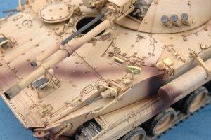 United Arab Emirates Army BMP-3   (Vista 3)