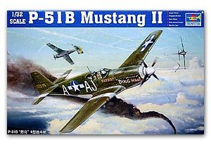 P-51 B Mustang  (Vista 1)