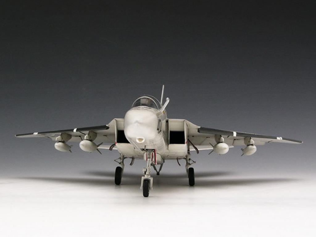 RA-5C Vigilante (Vista 4)