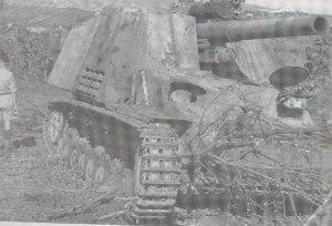 Hummel  (Vista 6)