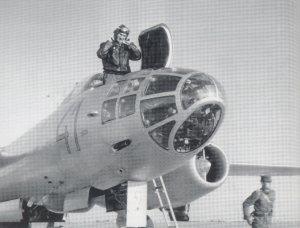 IL-28 Beagle  (Vista 2)