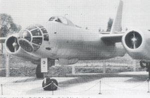 IL-28 Beagle  (Vista 4)