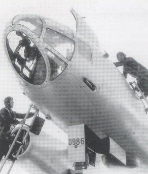 IL-28 Beagle  (Vista 5)