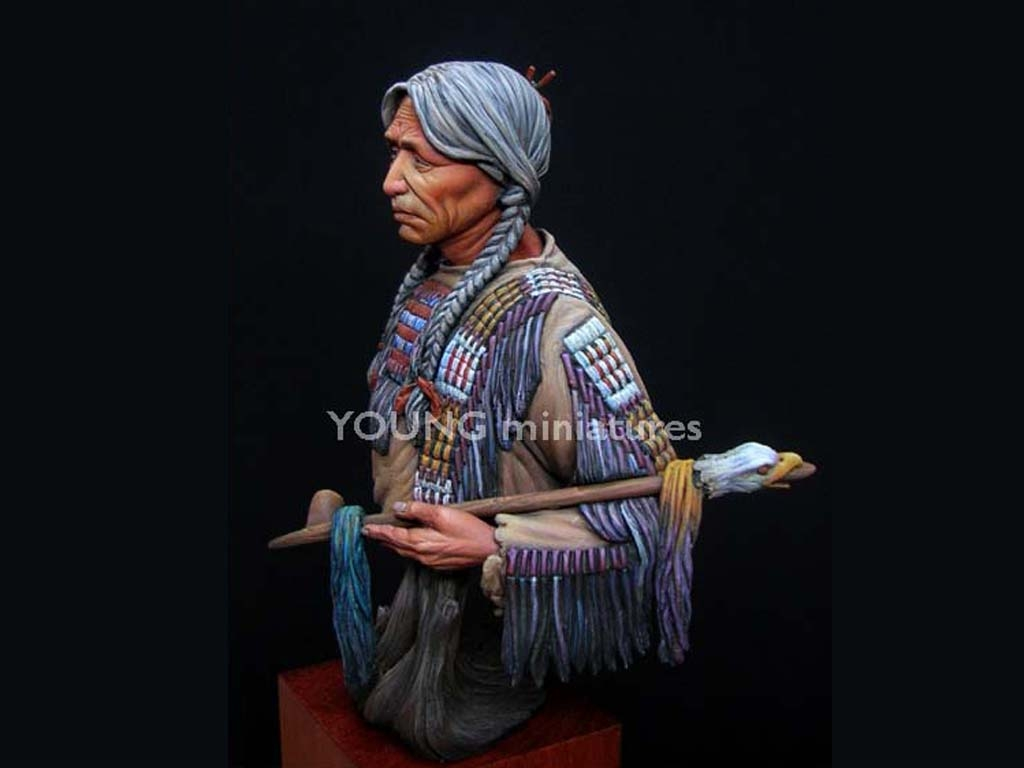 Sioux Indian  (Vista 2)