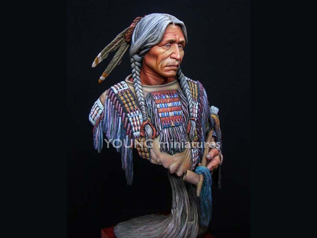 Sioux Indian  (Vista 3)