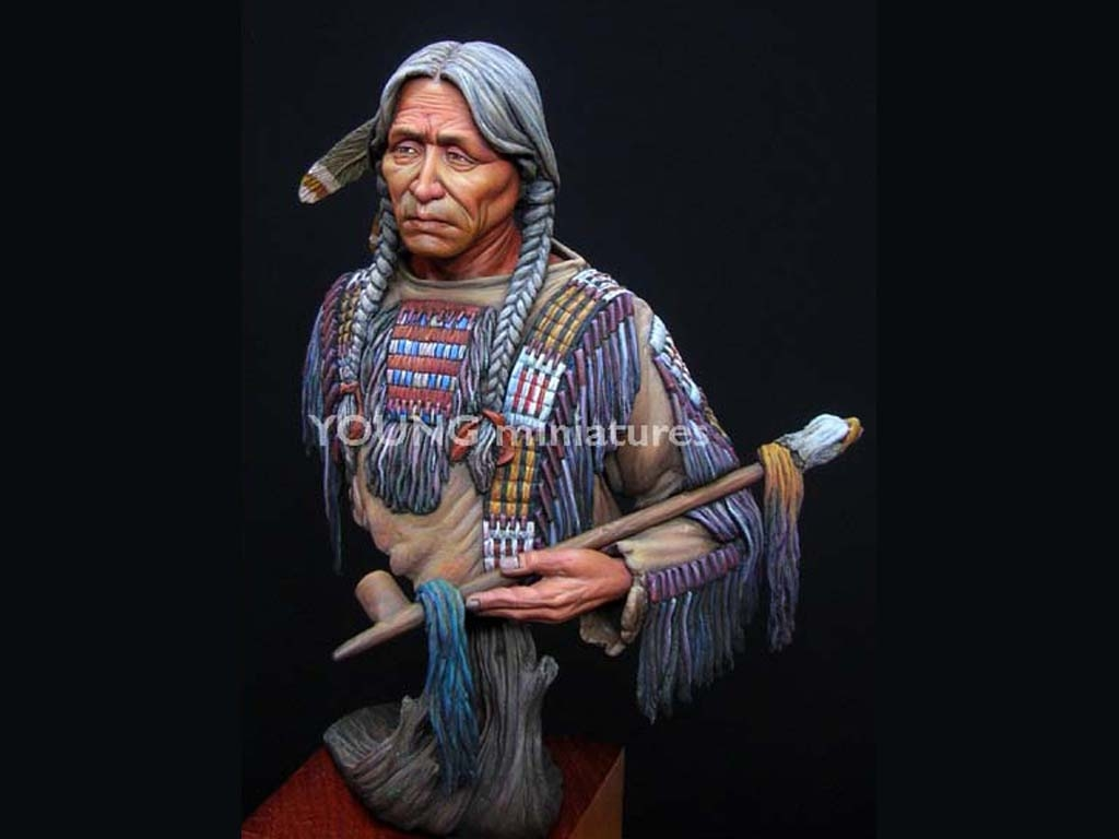 Sioux Indian  (Vista 5)