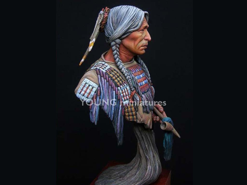 Sioux Indian  (Vista 6)