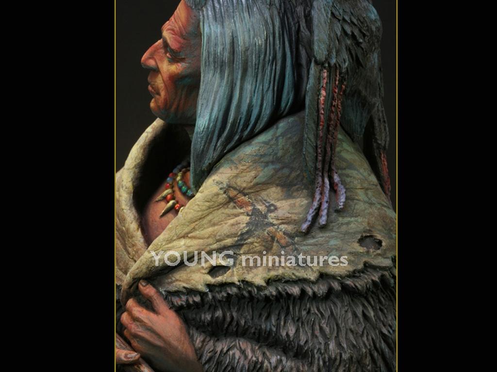 Blackfoot Raven Bearer  (Vista 11)