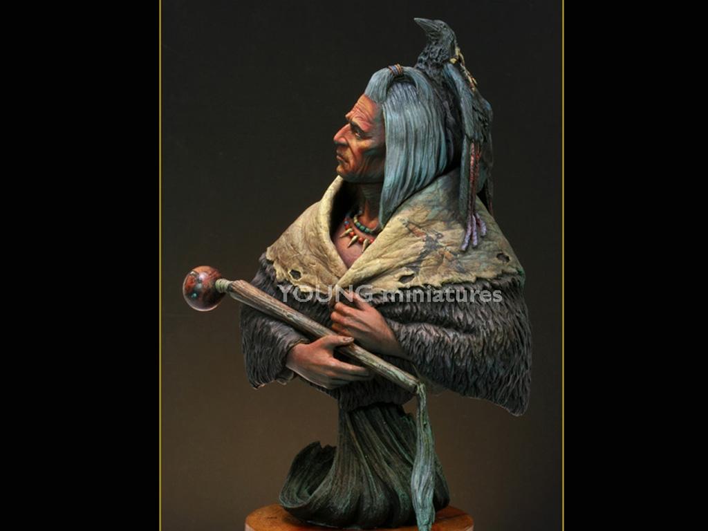 Blackfoot Raven Bearer  (Vista 3)