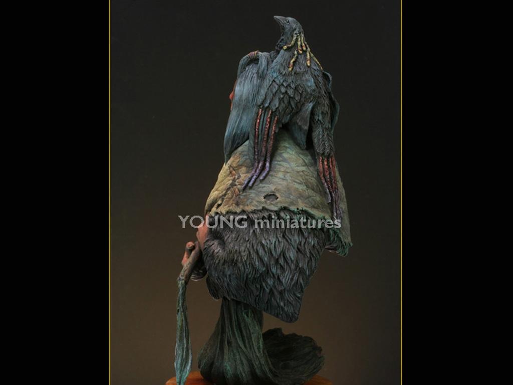 Blackfoot Raven Bearer  (Vista 4)