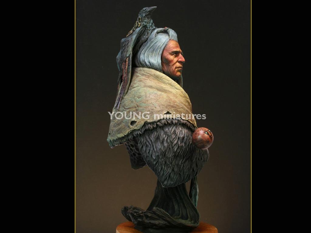 Blackfoot Raven Bearer  (Vista 7)