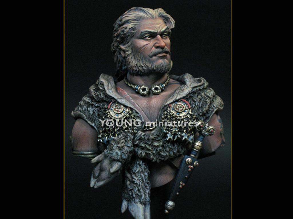 Guerrero Celta I sec. a.C. - Battle of   (Vista 5)