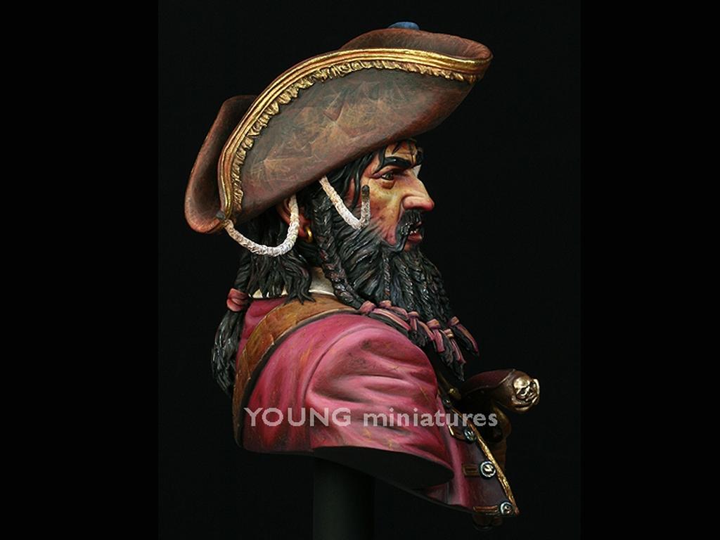 Black Beard 1718 - Queen Anne's Revenge  (Vista 6)